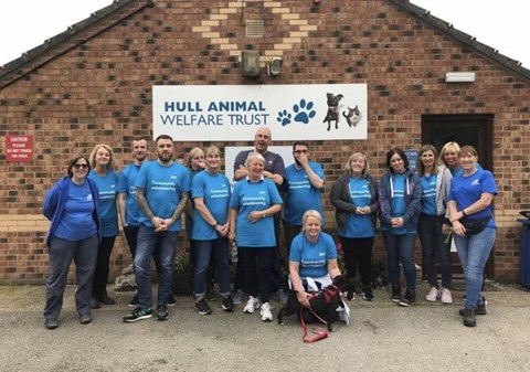 Hull colleagues volunteer at a local animal welfare centre